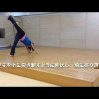 コンテンポラリージャズダンス初心者クラスの体の余分な力を抜いくリリーステクニック